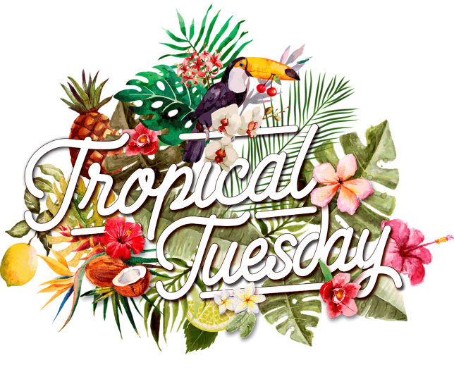 Logo Tropical Tuesday